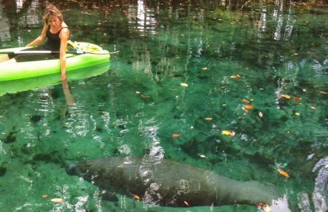 Canoe avec les lamantins à Crystal River